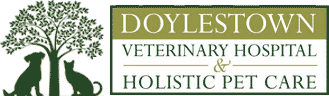 Doylestown Veterinary Hospital