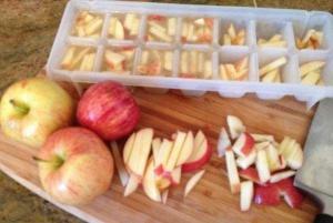 healthy homemade dog treats apple cubes